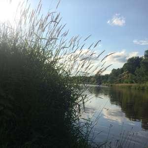 Tranquil Waubeka
