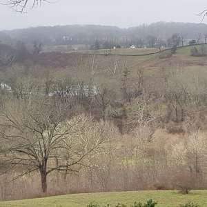 Tumble Creek Farm