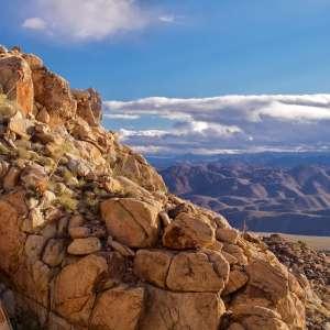 High Desert Peace