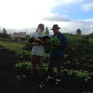 The Shire Plantation