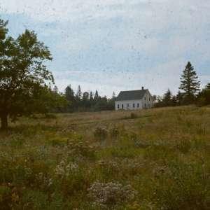 Severine F.'s Land