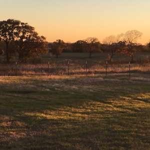 Coyote Creek Farm