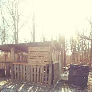 Freebird Farm and Homestead