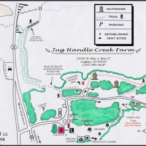 Jug Handle Creek Farm