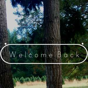 Welcome Back Woods