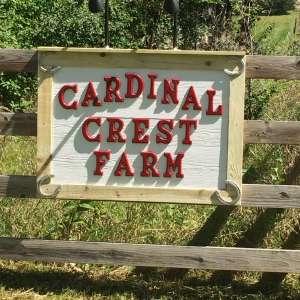 Cardinal Crest Farm RV Camping