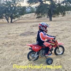 PioneerHomeFarms