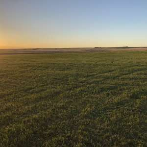 Sadler Ranch