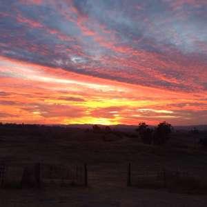 Lone Oak Ranch