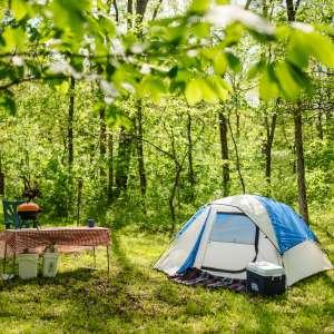 White Deer Camp