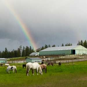 Spokane Western Horse Ranch!