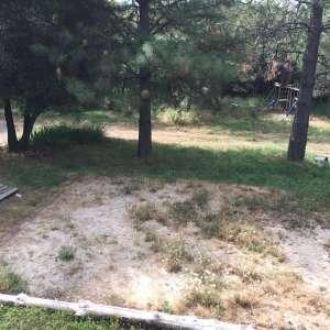 Fox ranch