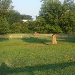 Red Bell Farms