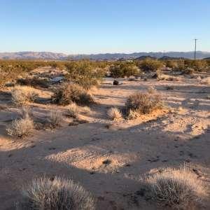 Virgin High Desert + Stars