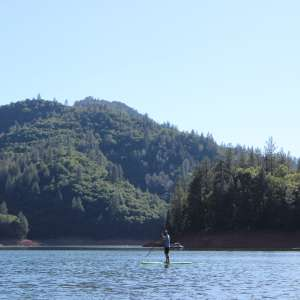 Up in the trees on Lake Shasta