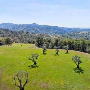 Pine Mountain Ranch