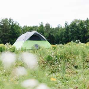 Barbour Farms Camp
