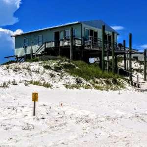 Dog Island Ohana Beach Bungalow