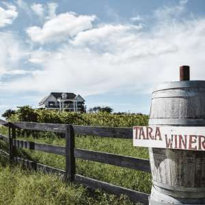 Tara Vineyard & Winery estate