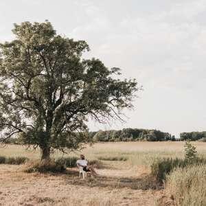 Song Dog Meadows