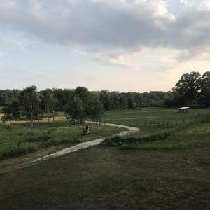 Dancer Creek Farm