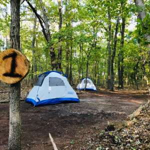 Camping at the Grove