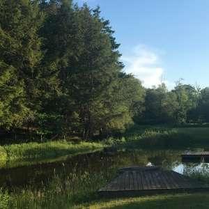 Camping I.'s Land