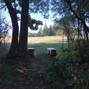 Port Townsend Camping
