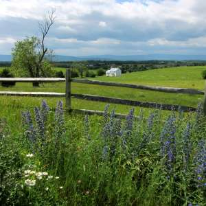 Cedar Creek & Belle Grove National Historical Park