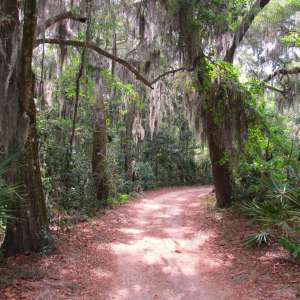 Timucuan Ecological & Historic Preserve