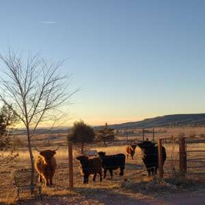 Cheyenne Mountain Farm
