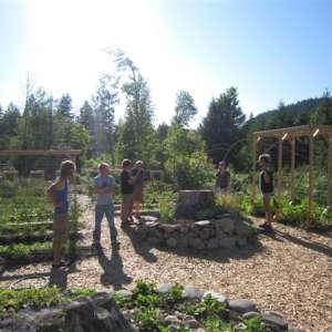 Zigzag Mountain Farm