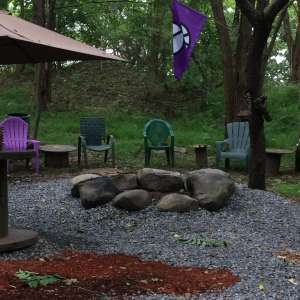 The Purple Squirrel Forest