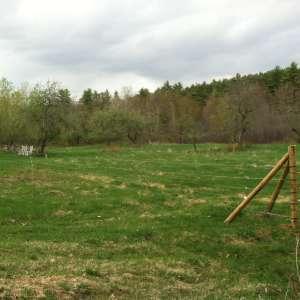 General Wolfe Farm