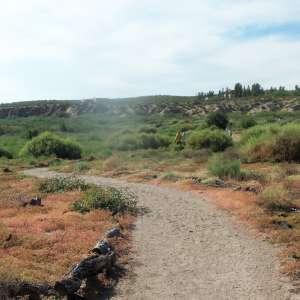 Rancho Ayahuasca