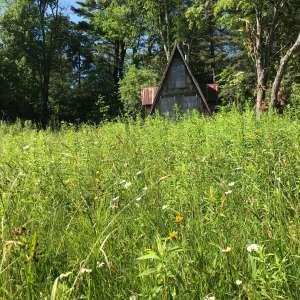 SiloSide Barn and Homestead