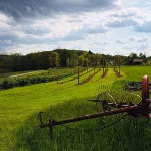 Hop Stop Farm