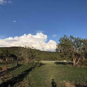 Brooke S.'s Land