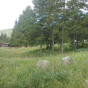 Silver Creek Ranch in Alice, CO
