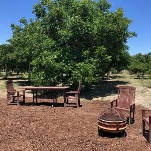 Farm Stay! Ballard Walnut Grove