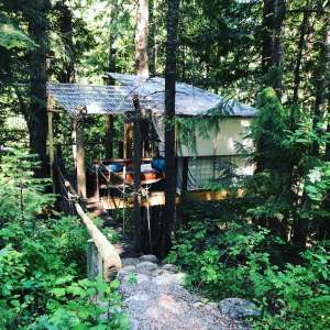 A Wee Place in the Woods