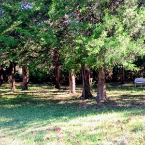 Cedar Creek Charm