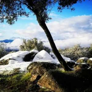 The Sacred Shekinah Retreat