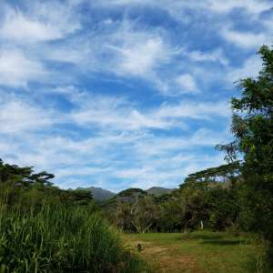 Breath of Heaven Sustainable