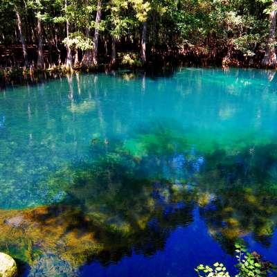 Manatee Springs Campground