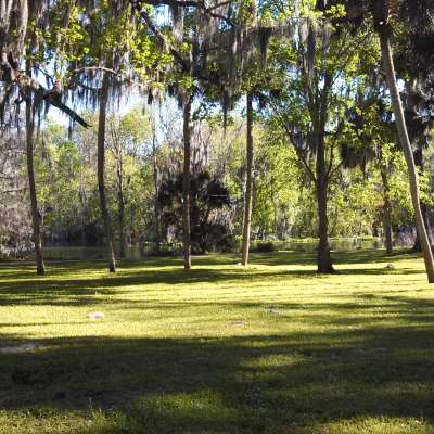 Silver Springs Campground