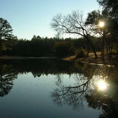 Aiken Campground