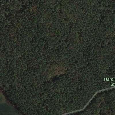 Hamilton Branch Campground