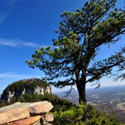 Pilot Mountain Campground