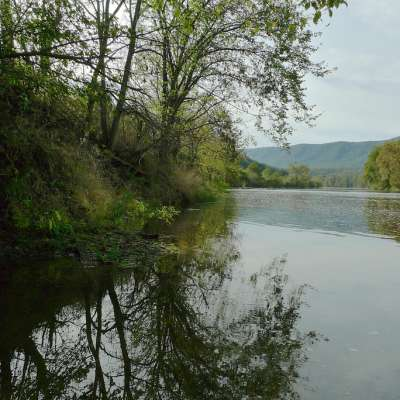 Shenandoah River Campground